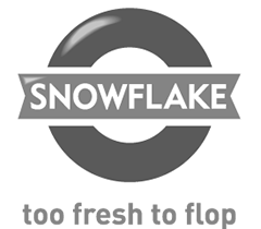 G&G-Digital-marketing-agency-sandton-johannesburg-client-snowflake-logo